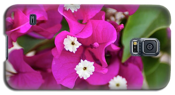 Pink And White Flowers Galaxy S5 Case