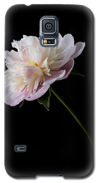 Pink And White Peony Galaxy S5 Case