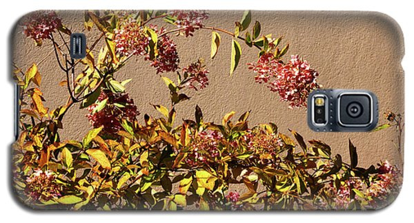 Pink Autumn Galaxy S5 Case