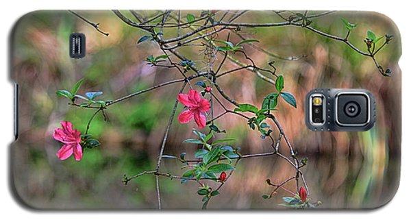 Galaxy S5 Case featuring the photograph Pink Azalea Dream by Deborah Benoit