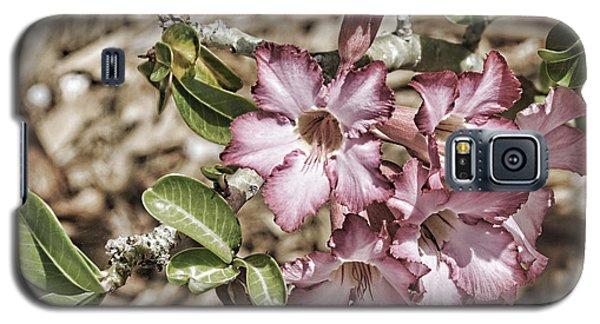 Pink Azalea II Galaxy S5 Case