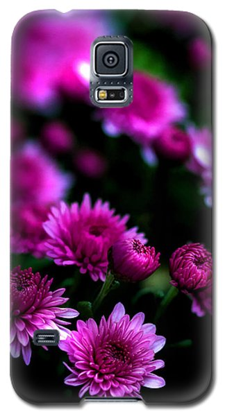 Galaxy S5 Case featuring the photograph Pink Beauty by Cherie Duran