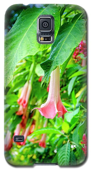 Pink Bell Flowers Galaxy S5 Case
