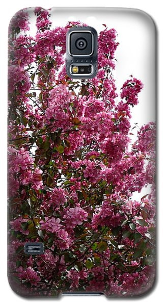 Pink Blossom 2 Galaxy S5 Case