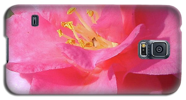 Galaxy S5 Case featuring the photograph Pink Camelia by Diane Ferguson