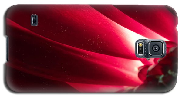 Pink Chrysanthemum Flower Petals  In Macro Canvas Close-up Galaxy S5 Case by John Williams