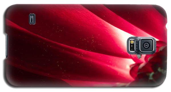 Pink Chrysanthemum Flower Petals  In Macro Canvas Close-up Galaxy S5 Case