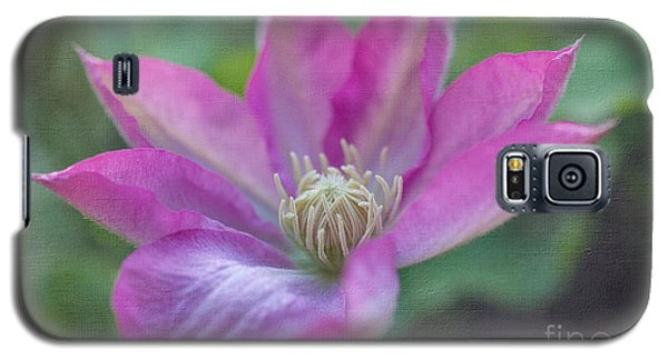 Pink Clematis #2 Galaxy S5 Case by Laurinda Bowling
