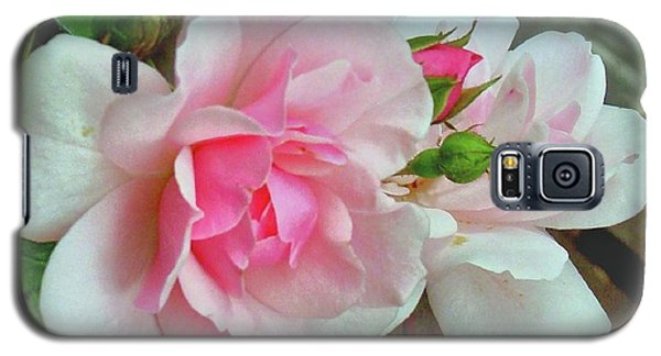 Galaxy S5 Case featuring the photograph Pink Cluster Of Roses by Janette Boyd