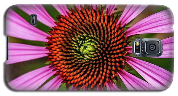 Galaxy S5 Case featuring the photograph Pink Cornflower by Joann Copeland-Paul