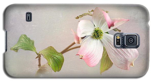 Pink Cornus Kousa Dogwood Blossom Galaxy S5 Case by Betty Denise