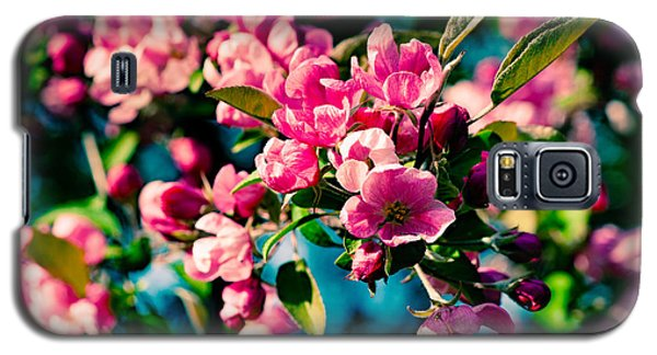 Galaxy S5 Case featuring the photograph Pink Crab Apple Flowers by Alexander Senin