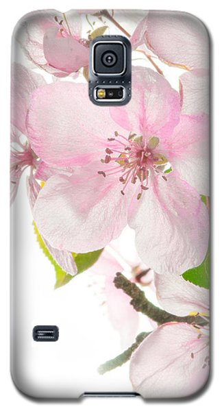 Pink Crabapple Blissoms Galaxy S5 Case