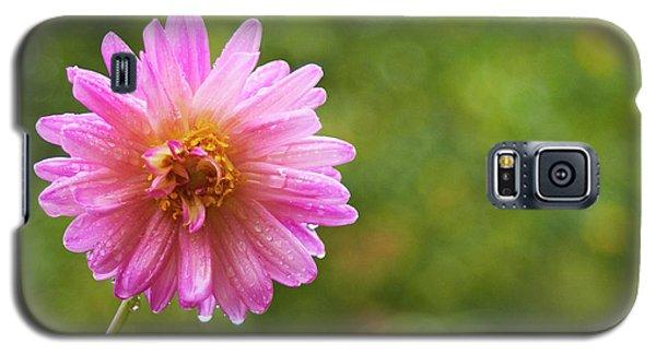 Pink Dahlia 1 Galaxy S5 Case