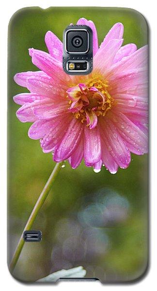 Pink Dahlia 2 Galaxy S5 Case