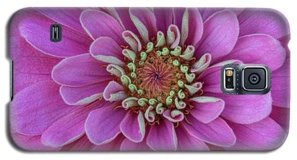 Galaxy S5 Case featuring the photograph Pink Dahlia by Dale Kincaid