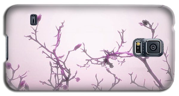 Pink Dawn Galaxy S5 Case by Ann Powell