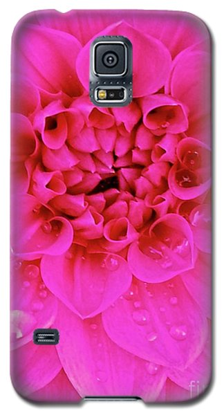 Galaxy S5 Case featuring the photograph Pink Delight by Cathy Dee Janes