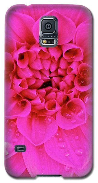 Pink Delight Galaxy S5 Case by Cathy Dee Janes