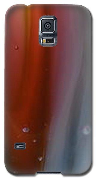 Pink Depths Galaxy S5 Case