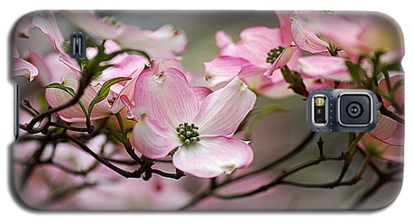 Galaxy S5 Case featuring the photograph Pink Dogwood 20120415_68a by Tina Hopkins
