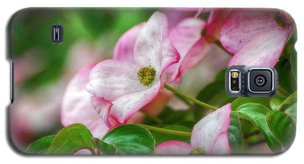 Galaxy S5 Case featuring the photograph Pink Dogwood by Bonnie Bruno