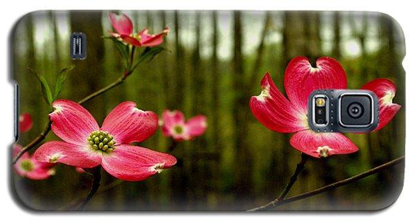 Pink Dogwood Flowers Galaxy S5 Case