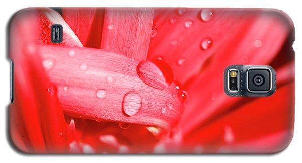 Pink Galaxy S5 Case