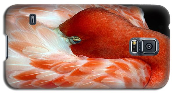Pink Flamingo Galaxy S5 Case