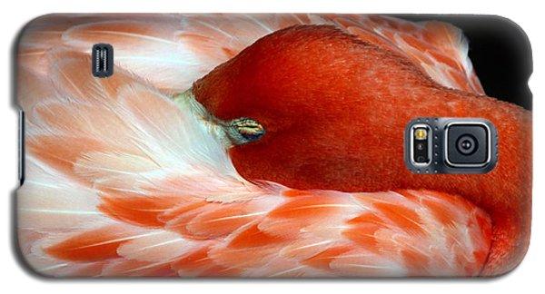 Pink Flamingo Galaxy S5 Case