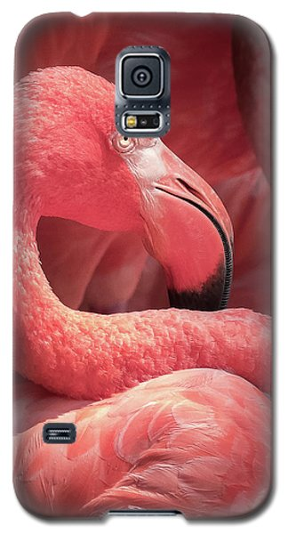 Pink Flamingo Fort Worth Zoo Galaxy S5 Case