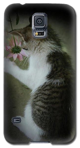 Pink Flower Galaxy S5 Case by Kim Henderson