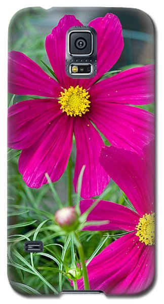 Pink Flower Galaxy S5 Case by Michael Bessler