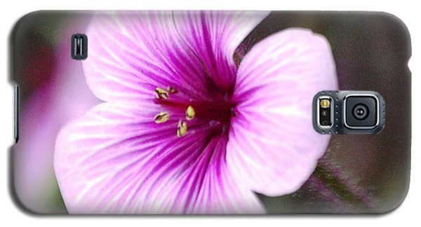 Pink Flower Galaxy S5 Case