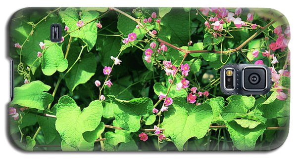 Pink Flowering Vine2 Galaxy S5 Case