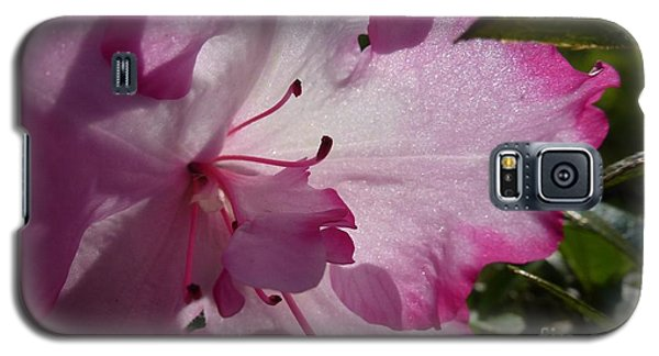 Pink Flowers 1 Galaxy S5 Case by Jean Bernard Roussilhe