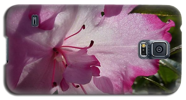 Pink Flowers 1 Galaxy S5 Case
