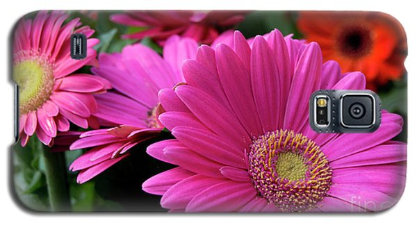 Galaxy S5 Case featuring the photograph Pink Flowers by Brian Jones