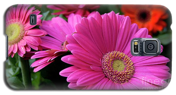 Pink Flowers Galaxy S5 Case by Brian Jones