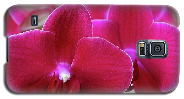 Red Orchid Galaxy S5 Case