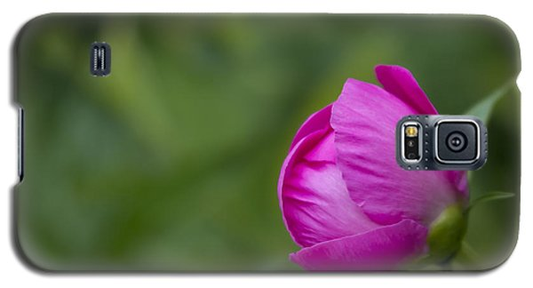 Pink Globe Galaxy S5 Case