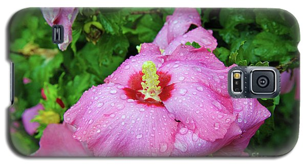 Pink Hibiscus After Rain Galaxy S5 Case