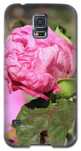 Pink Hibiscus Bud Galaxy S5 Case