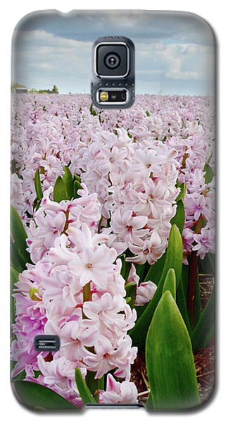 Pink Hyacinth  Galaxy S5 Case by Mihaela Pater