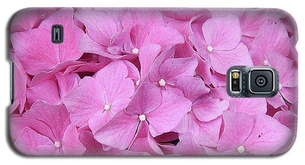 Pink Hydrangea Galaxy S5 Case by Elvira Ladocki
