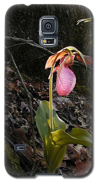 Pink Ladies Slipper Galaxy S5 Case