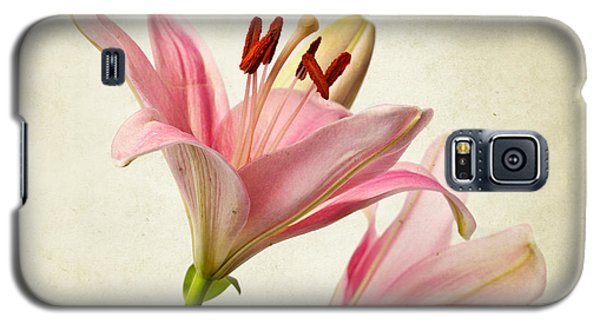 Lily Galaxy S5 Case - Pink Lilies by Nailia Schwarz