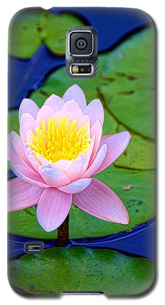 Pink Lily Galaxy S5 Case