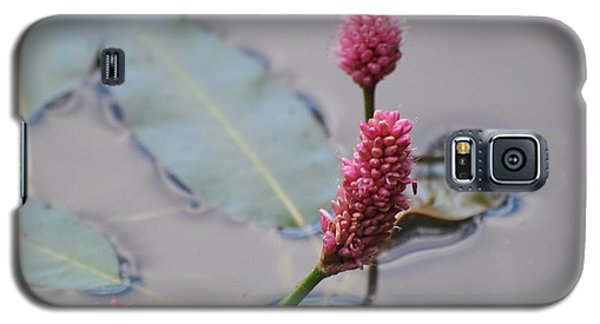 Pink Lily Pad Galaxy S5 Case