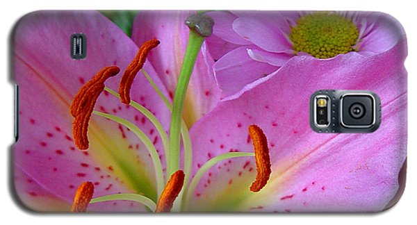 Pink Lily Galaxy S5 Case by Robert Knight